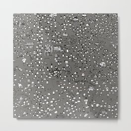 Grey Sheep Lyons Metal Print