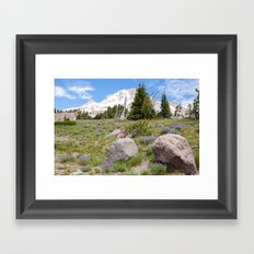 Mount Hood and Lupine Framed Art Print