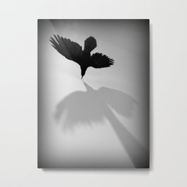 Raven Shadow Metal Print