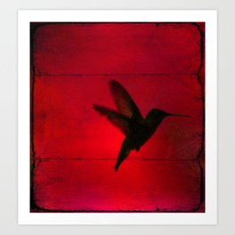 Hummingbird Behind the Red Blinds by CheyAnne Sexton Art Print
