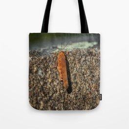 Cliffhanger Tote Bag