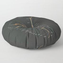 Dsungaripterus Weii Skeleton Study Floor Pillow