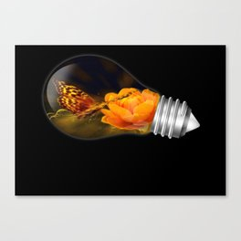 Why  Canvas Print