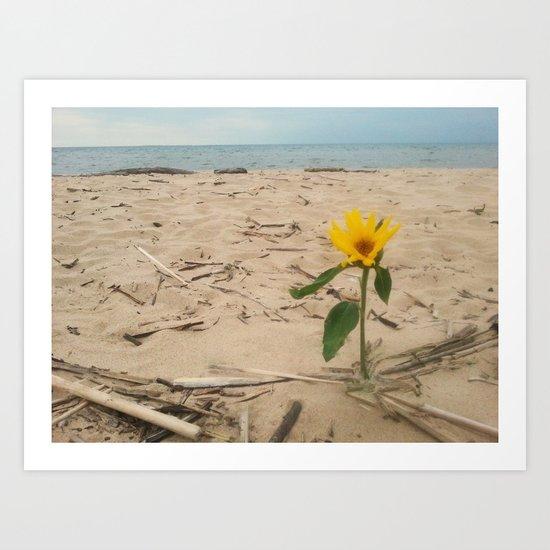 Sun on the Beach Art Print