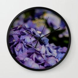 Makro_Hortensie_1 Wall Clock