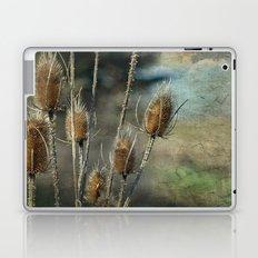 Teasel Laptop & iPad Skin