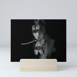 DRAGONFLY II Mini Art Print