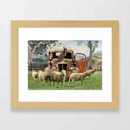 Kelpie Life Framed Art Print