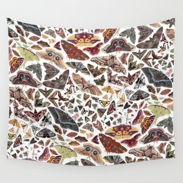 Moths of North America Pattern Wall Tapestry