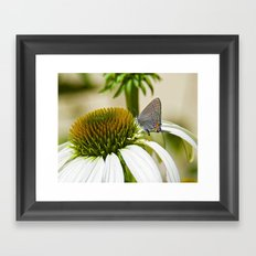 Lazy, Daisy, days of Summer Framed Art Print
