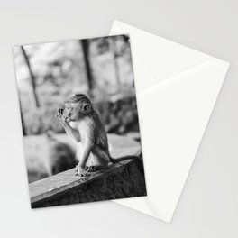 A baby monkey in the forest in Ubud, Bali | Nature Animal Photography in Indonesia | Black and white photography Art Print Stationery Cards
