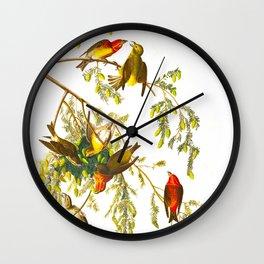 American Crossbill Vintage Bird Illustration Wall Clock