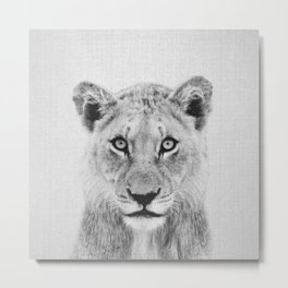 Lioness II - Black & White Metal Print