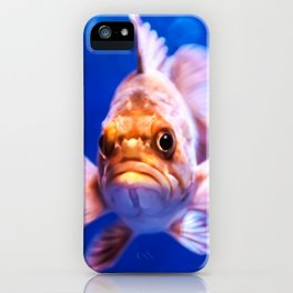 Grouper iPhone Case