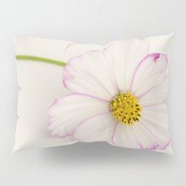 Sensation Cosmos Single Bloom Pillow Sham