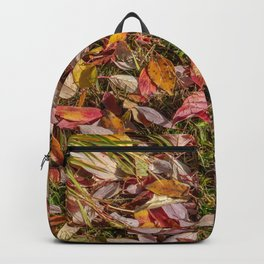 Red Yellow Green Brown Backpack