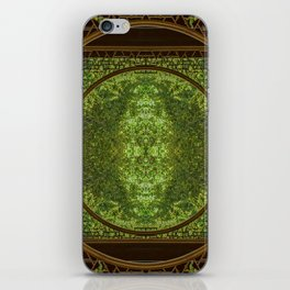 Concentricity iPhone Skin