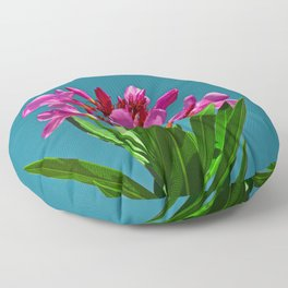 Pretty in pink under turquoise sky Floor Pillow