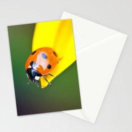 Geronimo! Stationery Cards