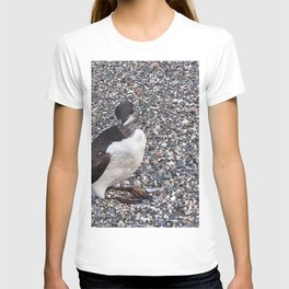 Razorbill Walking on the Beach T-shirt