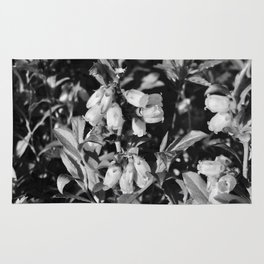 Tiny Blossoms On A Dirt Road in Black and White Rug