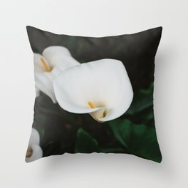 Carmel Blooms II Throw Pillow