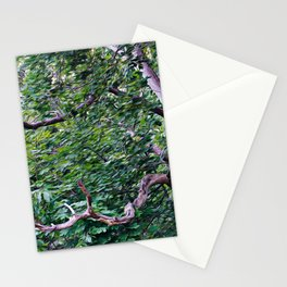 An Old Branch Stationery Cards