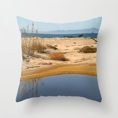 Water By The Ocean Throw Pillow