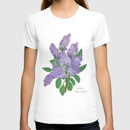 Lilacs: Syringa T-shirt