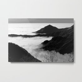 Sequoia National Forest 2016 Metal Print