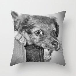 Puppy biting camera strap Throw Pillow