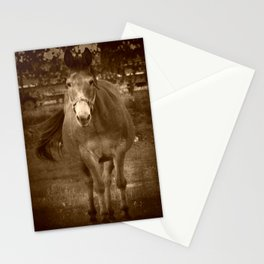 Hello Long Ears Stationery Cards