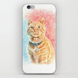 Goose The Cat iPhone Skin