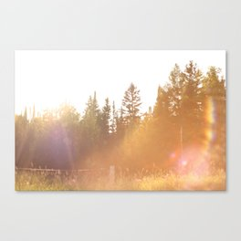 All the Pretty Colors Canvas Print