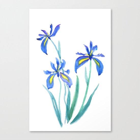 blue iris watercolor Canvas Print