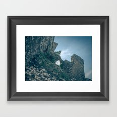 Rovine Framed Art Print