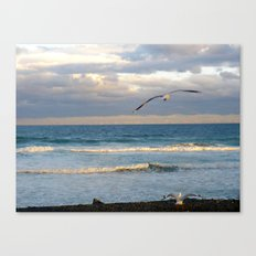 CoffsHarbour 7 Canvas Print