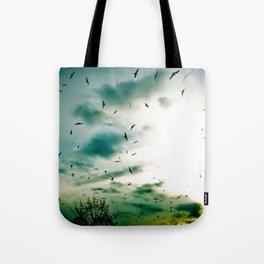 Descendants of Icarus Tote Bag
