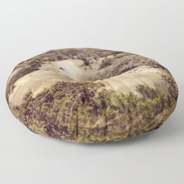 Hot Wheels Floor Pillow