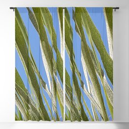Green Leaves Blue Sky Blackout Curtain