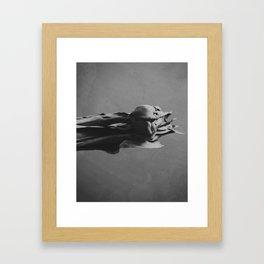 Day 0461 /// Hidden/hoarse Framed Art Print