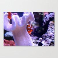 nemo Canvas Prints featuring Nemo by Hugin