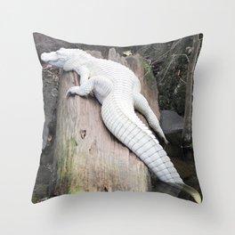 Albino Alligator Throw Pillow