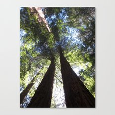 We Build this Together Canvas Print