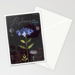 "Botanical illustration ""Hydrangea Serrata"" Stationery Cards"