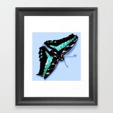 Papillon vert Framed Art Print