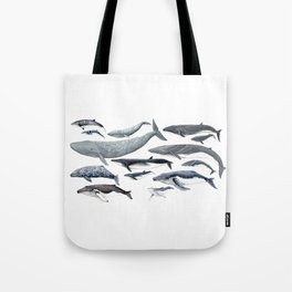 Whale diversity Tote Bag