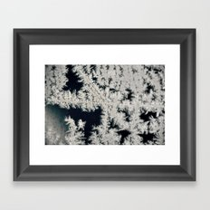 Jack Frost Framed Art Print