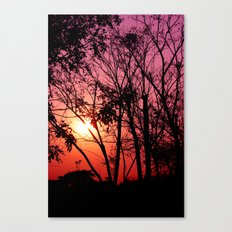 Pinky Sunset Canvas Print