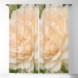 Delicate Petals Blackout Curtain